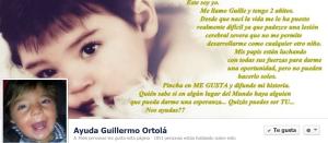 Ayuda a Guillermo Ortolá